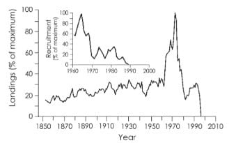 """""""The 'March of Folly' in Global Fisheries"""" in a 2011 book on Shifting Baselines"""
