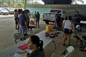 Asociacion Humanitaria para la Proteccion Animal de Costa Rica