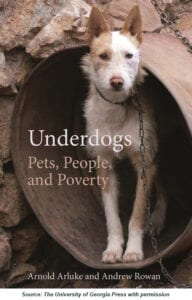 Underdogs Cover Image WCreds