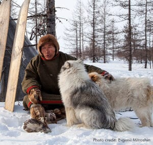 Yamal, Nenets Man & Dogs, | Photo credit: Evgenii Mitroshin