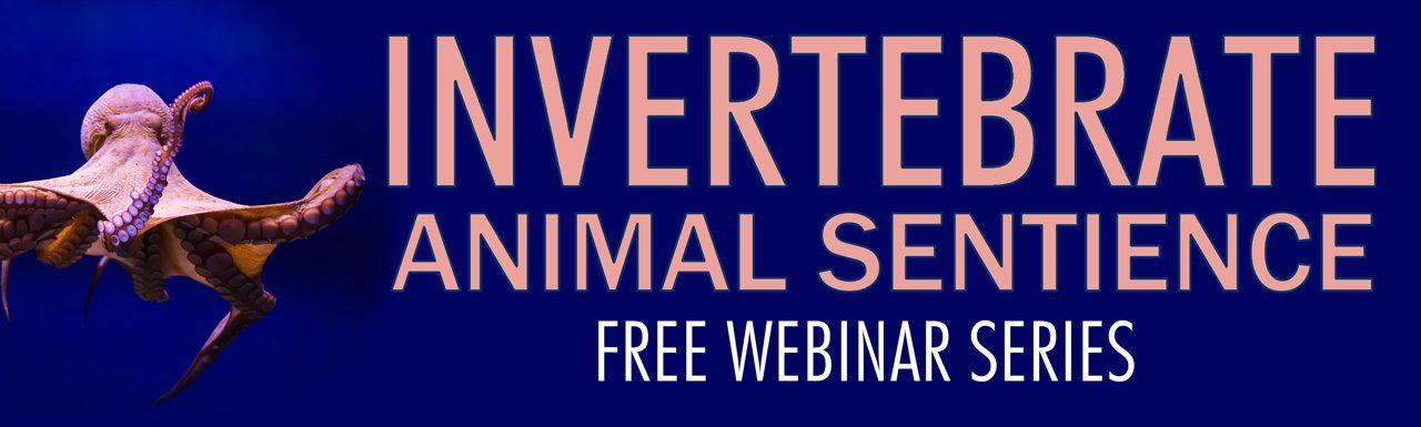 Invertebrate Animal Sentience Free Webinar Series