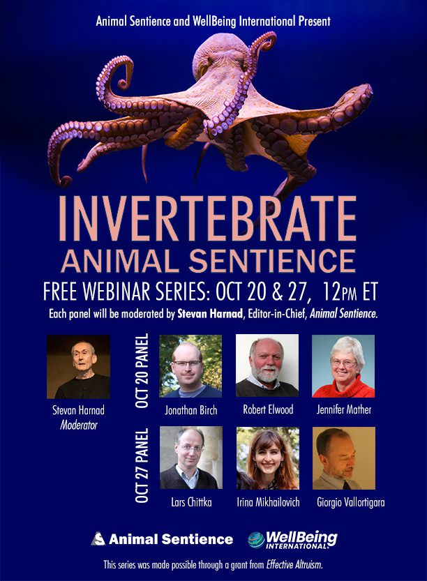 Animal Sentience and WellBeing International Present Invertebrate Animal Sentience Free Webinar Series: Oct 20 & 27, 12PM ET. Each panel will be moderated by Stevan Harad, Editior-in-Chief, Animal Sentience. | Photos of Stevan Harnad, Jonathan Birch, Robert Elwood, Jennifer Mather, Lars Chittka, Irina Mikhalevich and Giorgio Vallortigara. | Logos of Animal Sentience and WellBeing International | This series was made possible through a grant from Effective Altruism.