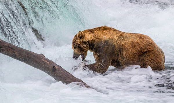 600x400-Otis-Perfect-Fishing-Weight-by-Claus-Cramer-500px,-1149464338